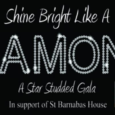 Shine Bright Like A Diamond | Pavilion Theatre Worthing Worthing  | Sun 20th October 2013 Lineup
