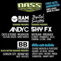 Nass Festival 2013 at Bath And West Show Ground
