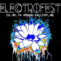 Electro-Fest at Kraak Gallery