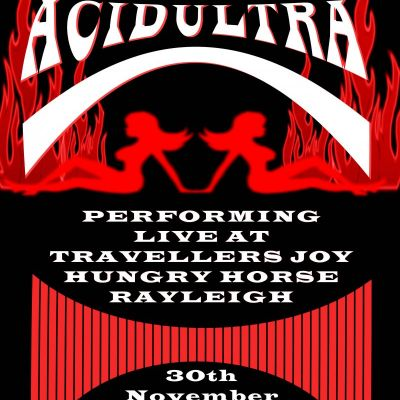 ACIDULTRA | The Travellers Joy Rayleigh  | Sat 30th November 2013 Lineup