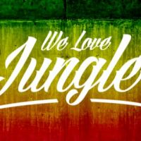 Jungle Jam - We Love Jungle